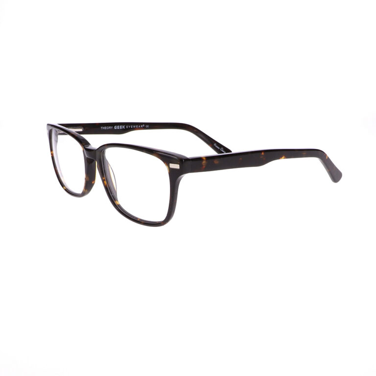 Geek Theory Eyeglasses in Tortoise LBI-GK-THEORY-T