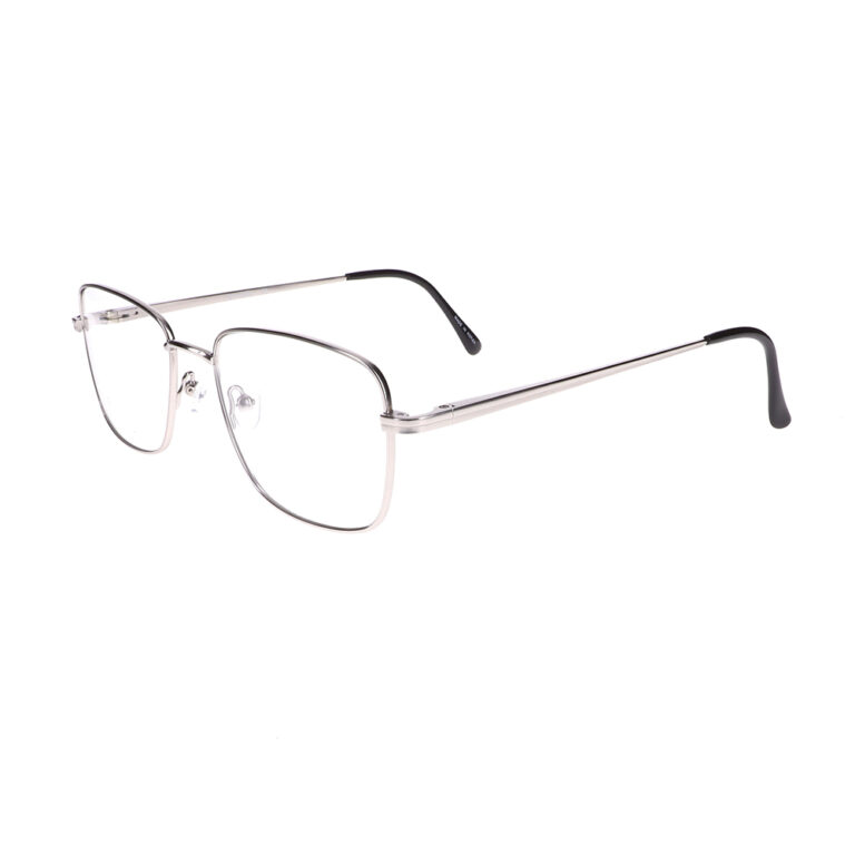 Eight to Eighty Henry Silver Eyeglasses ETE-HENRY-S
